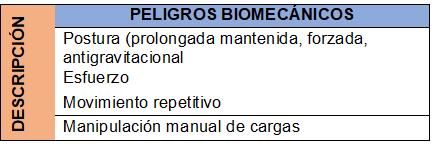 Peligros biomecánicos